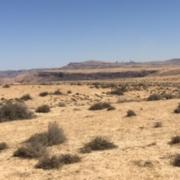 desierto-jordania-lasser-eolica